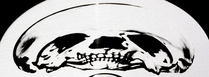 ANAMORPHOTIC SKULL 1